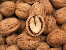 Walnut heart-shape Royalty Free Stock Image