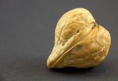Walnut heart. Walnut in shape of heart royalty free stock photos