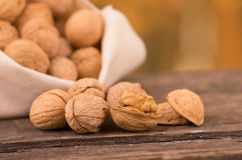 Walnut heaven Royalty Free Stock Images