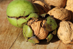 Walnut husk Royalty Free Stock Photography