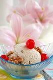 Walnut ice cream Royalty Free Stock Photos