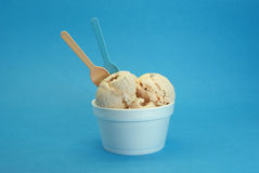 Walnut ice cream royalty free stock photo