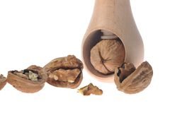 Walnut inserted into nutcracker Royalty Free Stock Photography