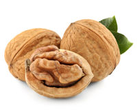 Walnut isolated Stock Image