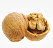 Walnut isolated and open Stock Images