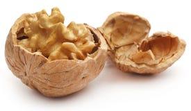 Walnut isolated. Over white background stock photo