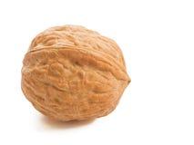 Walnut isolated on white. Stock Images