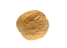 Walnut isolated on white background Royalty Free Stock Image