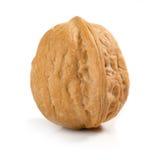 Walnut Stock Images