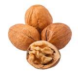 Walnut on isolated white background. Isolated walnut on white background stock photo
