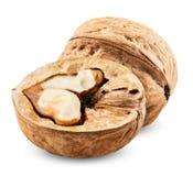 Walnut isolated Stock Photos