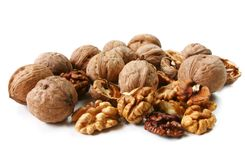 Walnut (Juglans regia) Stock Images