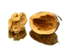 Walnut Royalty Free Stock Image