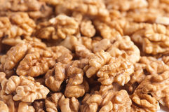 Walnut kernel Royalty Free Stock Photos