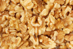 Walnut kernel Stock Images