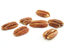 Walnut kernel group Stock Image