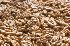 Walnut kernel like a background Stock Photography