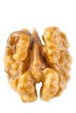 Walnut kernel macro. Walnut kernel isolated on white background royalty free stock image