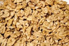 Walnut kernel Royalty Free Stock Image