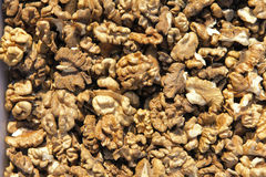 Walnut kernels Royalty Free Stock Photo