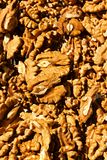 Walnut kernels Stock Photos