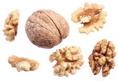 Walnut kernels and walnut. Royalty Free Stock Photo