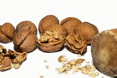 Walnuts. Walnut kernels and whole walnuts on background Royalty Free Stock Photos