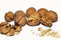 Walnuts. Walnut kernels and whole walnuts on background Royalty Free Stock Photography