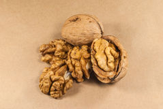 Walnut kernels and whole walnuts on kraft paper Stock Image