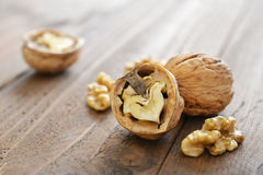 Walnut kernels Royalty Free Stock Images