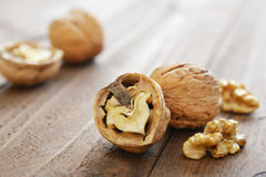 Walnut kernels Stock Images