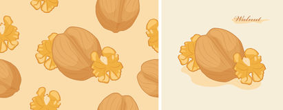 Walnut. Label and seamless background for design Stock Images