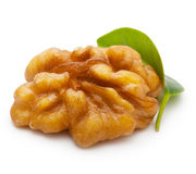 Walnut with leaf isolated Stock Images
