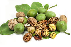 Walnut and leaves Stock Photos