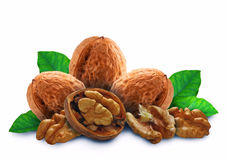 Walnut with leaves and a shell Royalty Free Stock Images