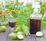 Walnut liqueur. Healthy home-made walnut liqueur Royalty Free Stock Image