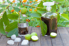 Walnut liqueur. With ice on the rustic table royalty free stock image