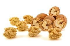 Walnut macro isolate on a white background. Peeled nuts and shel. L close-up macro Stock Image