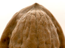 A walnut. Macro one shot, natural light stock photos