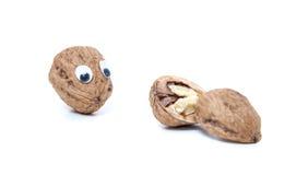 Walnut mit googly eyes Stock Photos