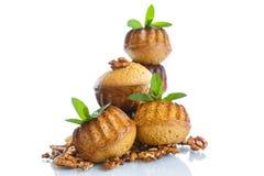 Walnut muffins Royalty Free Stock Photos