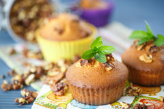 Walnut muffins Royalty Free Stock Photography