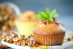 Walnut muffins Stock Image