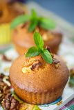 Walnut muffins Stock Images