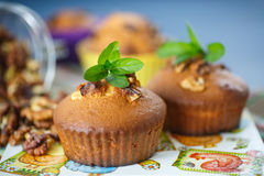 Walnut muffins Stock Photo