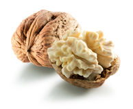Walnut with nucleus isolated on the white background.  royalty free stock photography