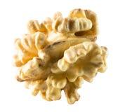 Walnut nucleus isolated on the white background.  royalty free stock image