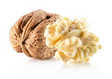 Walnut with nucleus on the white background.  royalty free stock photography
