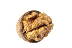 Walnut nut Royalty Free Stock Photos