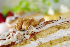 Walnut on Nut Cake stock photo